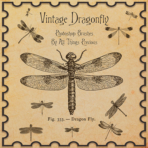 ABR Brushes - Vintage Dragonfly